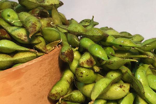 丹波黒枝豆を通販でご提供~手頃な値段で人気の黒枝豆をお届け~