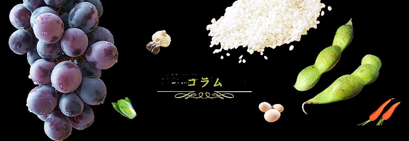 枝豆のコラム