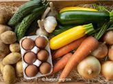 丹波篠山旬野菜と新鮮平飼卵詰め合わせセット