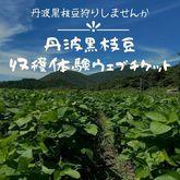 【受付終了】黒枝豆の収穫体験予約ウェブチケット