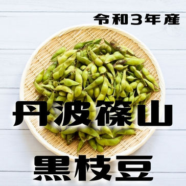 【通販予約】丹波黒枝豆 さや枝豆/2kg(10月21日~31日発送)